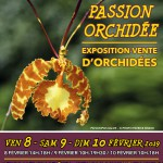 Exposition PASSION ORCHIDEE à Louveciennes