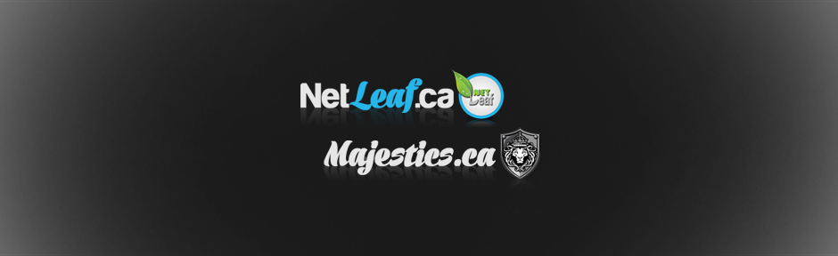 Netleaf Majestics s'allient pour offrir meilleur service marketing