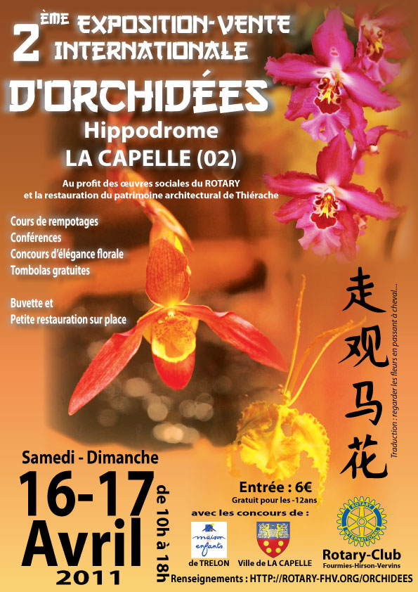 Orchidées Exposition 16 17 avril à La Capelle (02)