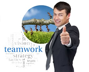 The Teamwork Project, opportunité fabuleuse